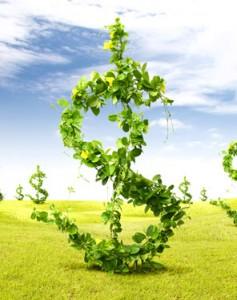 SEO make more money online